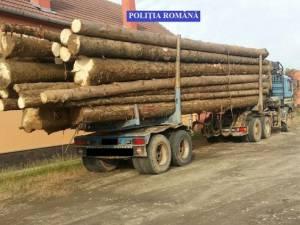 Material lemnos descoperit şi confiscat de poliţişti