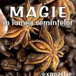 """Expoziţia temporară intitulată """"Magie în lumea seminţelor"""", la Muzeul de Ştiinţele Naturii"""