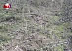 Cele mai mari pagube produse în ţară, anul acesta, de fenomenele meteorologice extreme s-au înregistrat în Suceava
